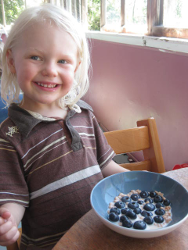 Jake about to enjoy his organic blueberries image